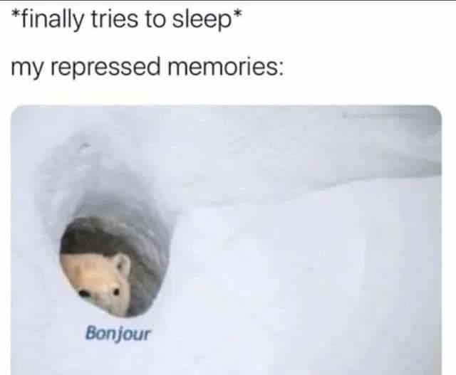 *finally tries to sleep* my repressed memories: Bonjour Polar bear Text Bear Adaptation