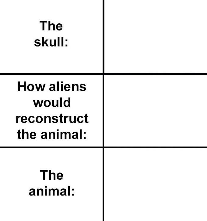 The skull: How aliens would reconstruct the animal: The animal: Text Line Font