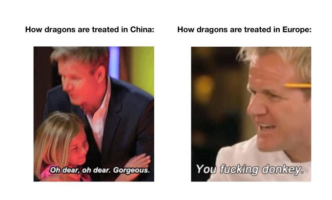 How dragons are treated in China: How dragons are treated in Europe: Oh dear, oh dear. Gorgeous. You fucking donkey. Face Facial expression Skin Nose Head Chin Cheek Forehead Human