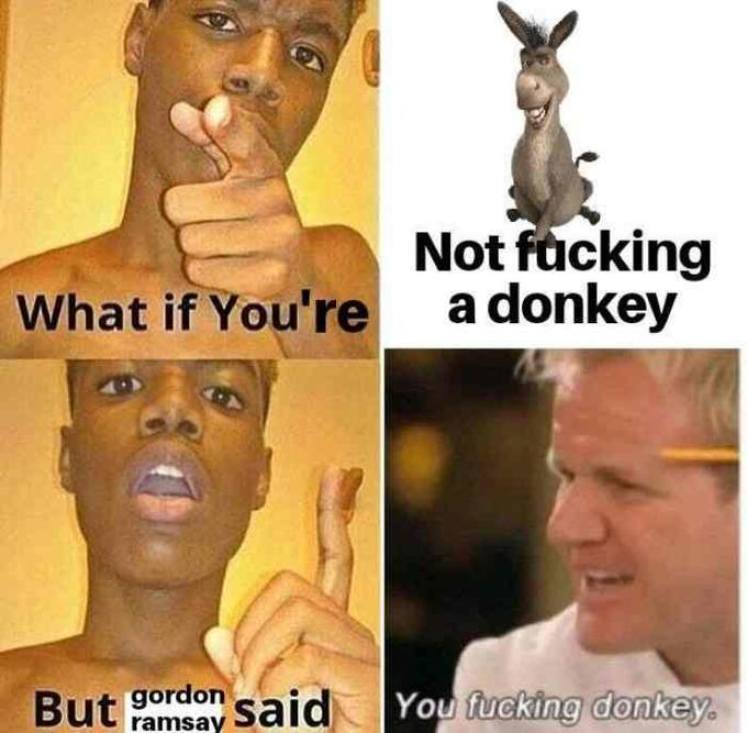 Not facking a donkey What if You're But gordon said You fucking donkey. ramsay Face Nose Head Forehead Internet meme Photo caption Human