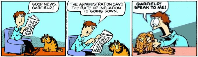 GOOD NEWS, GARFIELD! THE ADMINISTRATION SAYS THE RATE OF INFLATION IS GOING DOWN. GARFIELD! SPEAK TO ME! Cartoon Comics Comic book Fiction