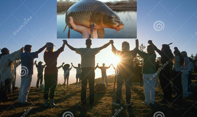 dreamstime dreamstime prtime dreamstime prtime Organism Vertebrate People in nature Adaptation World Marine biology Flash photography Astronomical object