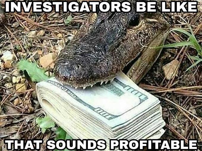 Another Successful Investigatorment