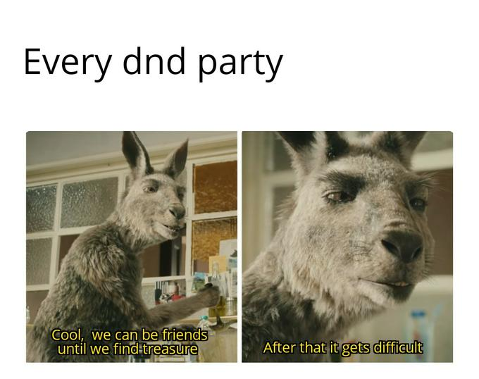 Every dnd party Cool, we can be friends until we find treasure After that it gets difficult Dungeons & Dragons Organism Vertebrate Terrestrial animal Snout Jaw Adaptation Wildlife Neck Snapshot Big cats Lion