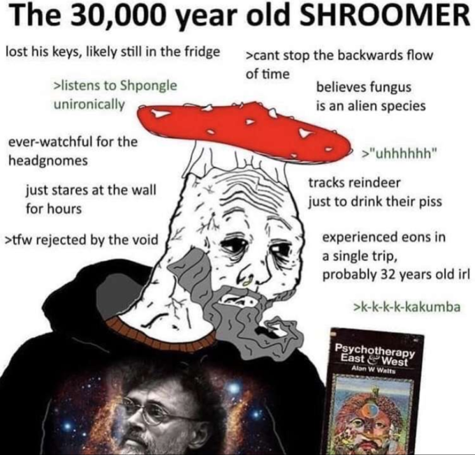 The 30,000 year old SHROOMER lost his keys, likely still in the fridge >cant stop the backwards flow of time >listens to Shpongle unironically believes fungus is an alien species ever-watchful for the >