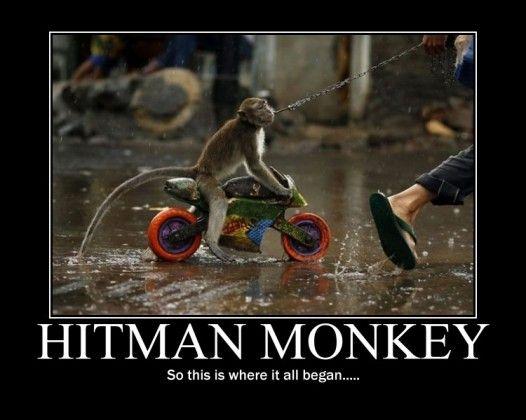 Image 28285 Hitman Monkey Know Your Meme