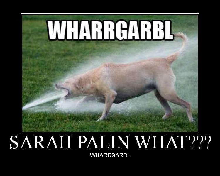 image 32945 wharrgarbl sprinkler dog know your meme
