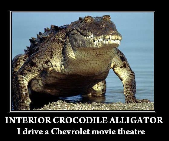 Image 64857 Interior Crocodile Alligator Know Your Meme