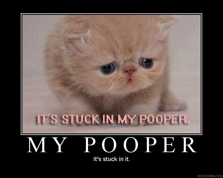 Stuck in her pooper get