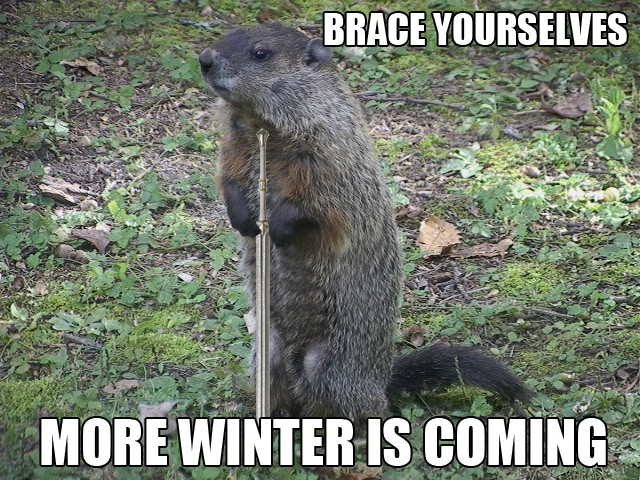 BRACE YOURSELVES MORE WINTER IS COMING