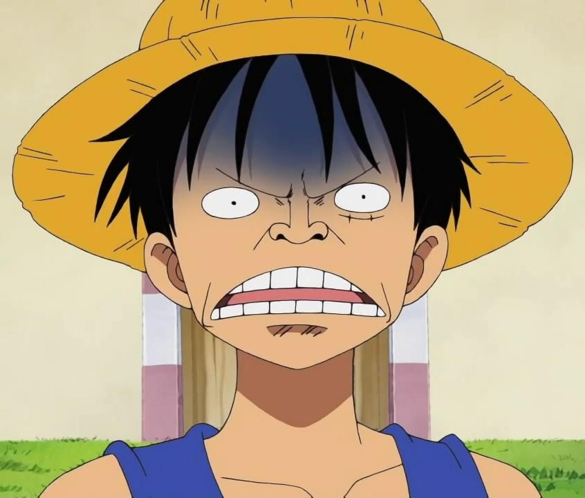 Monkey D Luffy Usopp Nami Roronoa Zoro Face Nose Facial Expression Yellow Human Hair Color