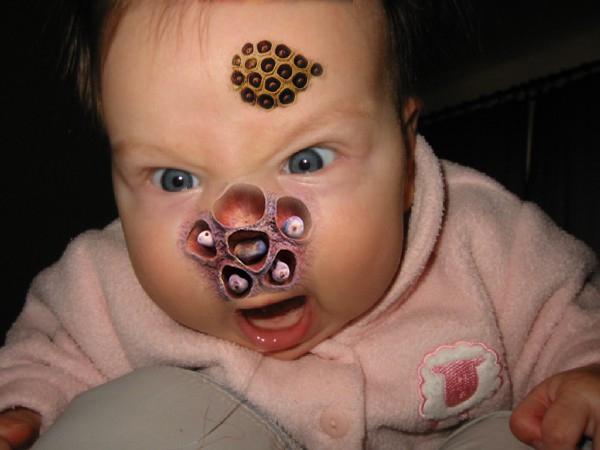 Lotus Baby Trypophobia Know Your Meme