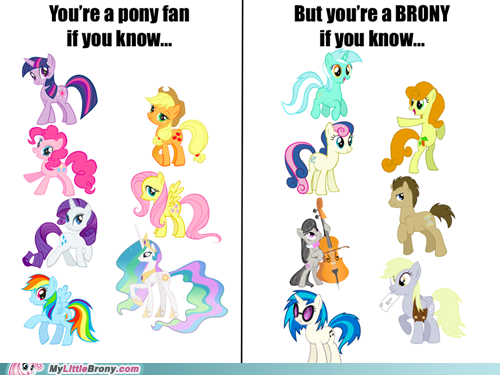 image 297639 my little pony friendship is magic know your meme