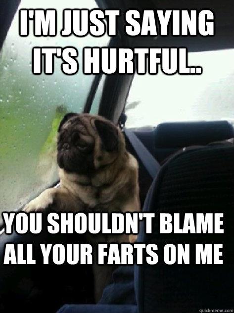 Image 415032 Introspective Pug Know Your Meme