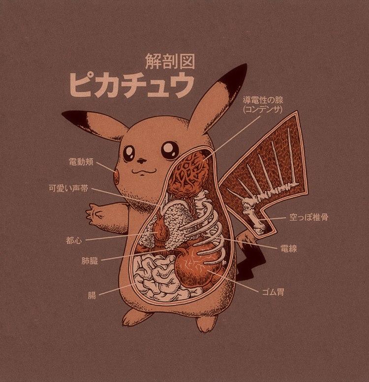 Pikachu\'s anatomy | Ruined Childhood | Know Your Meme