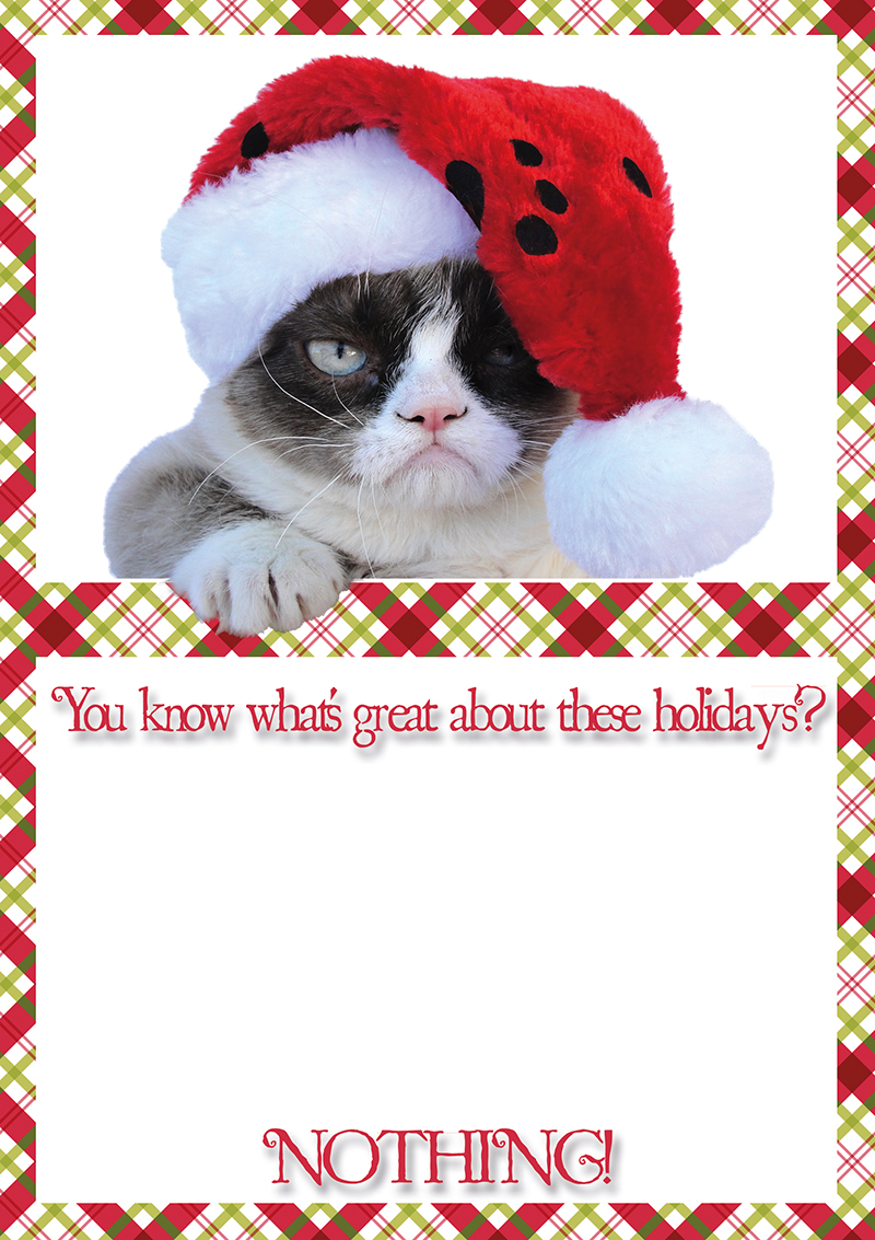 Image - 444364] | Grumpy Cat | Know Your Meme