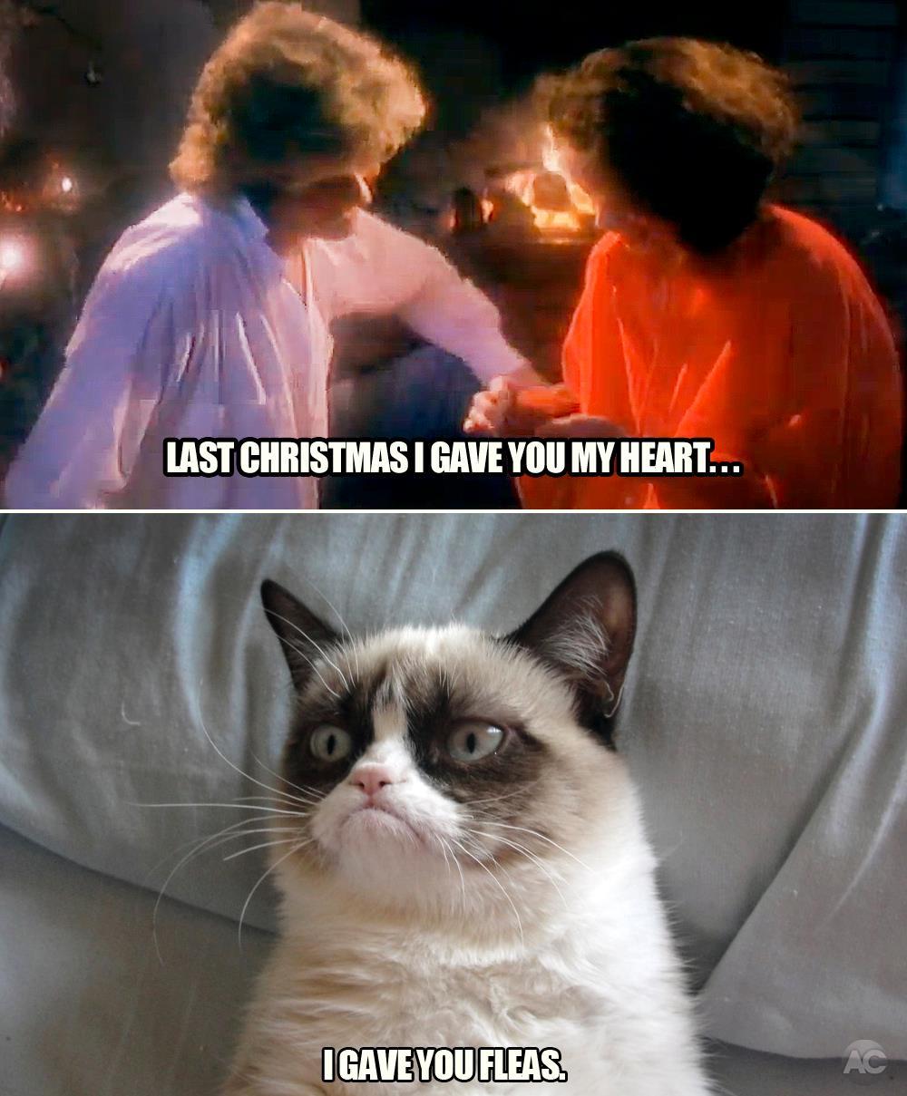 last christmas i gave you my heart gave youfleas - Last Christmas I Gave You My Heart