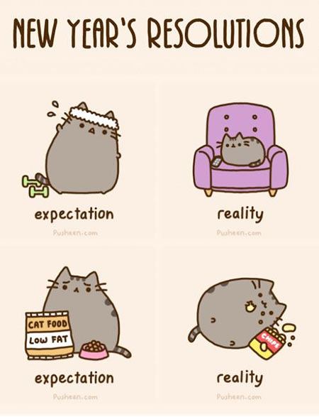 New Year S Resolutions Pusheen Know Your Meme