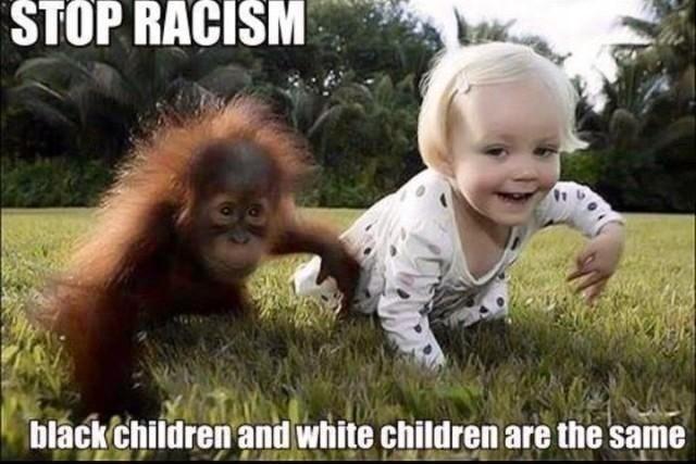 6c4 stop racism concernedmom420 know your meme