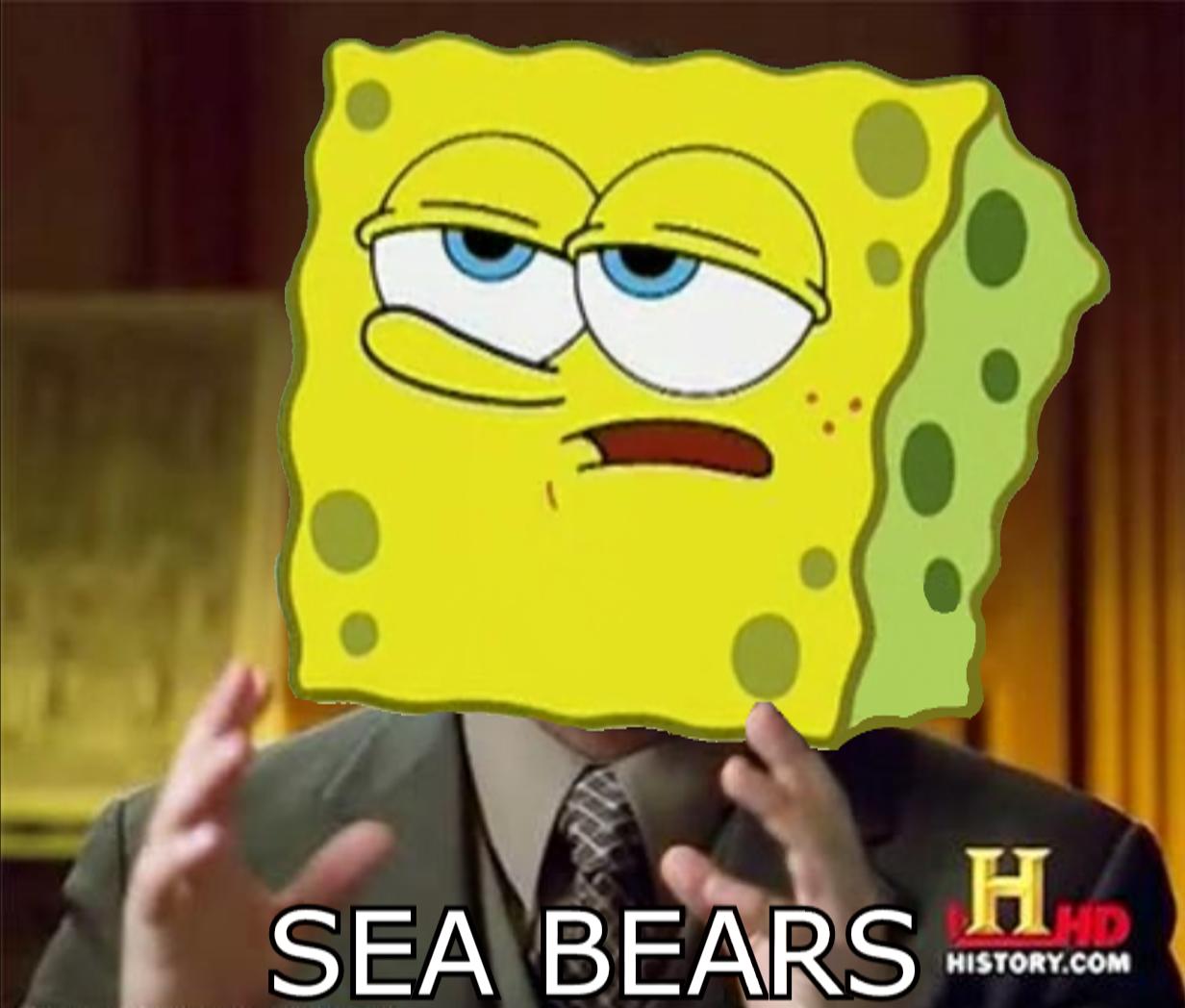 Sea bears history com face cartoon yellow facial expression head smile