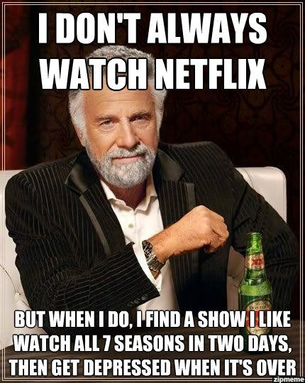 Image result for memes about netflix