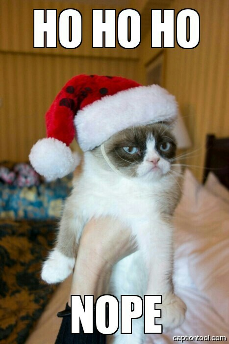 grumpy santa cat ha ha ha no know your meme