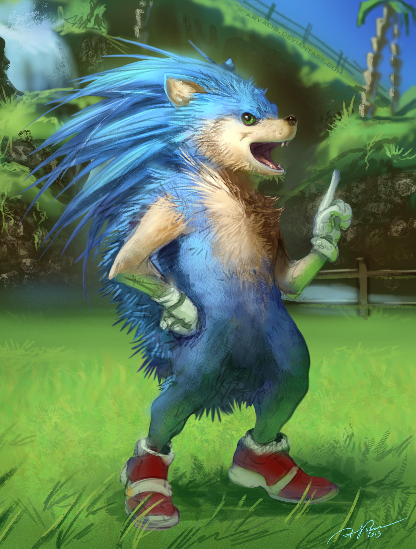 Realistic Sonic Untoons Know Your Meme