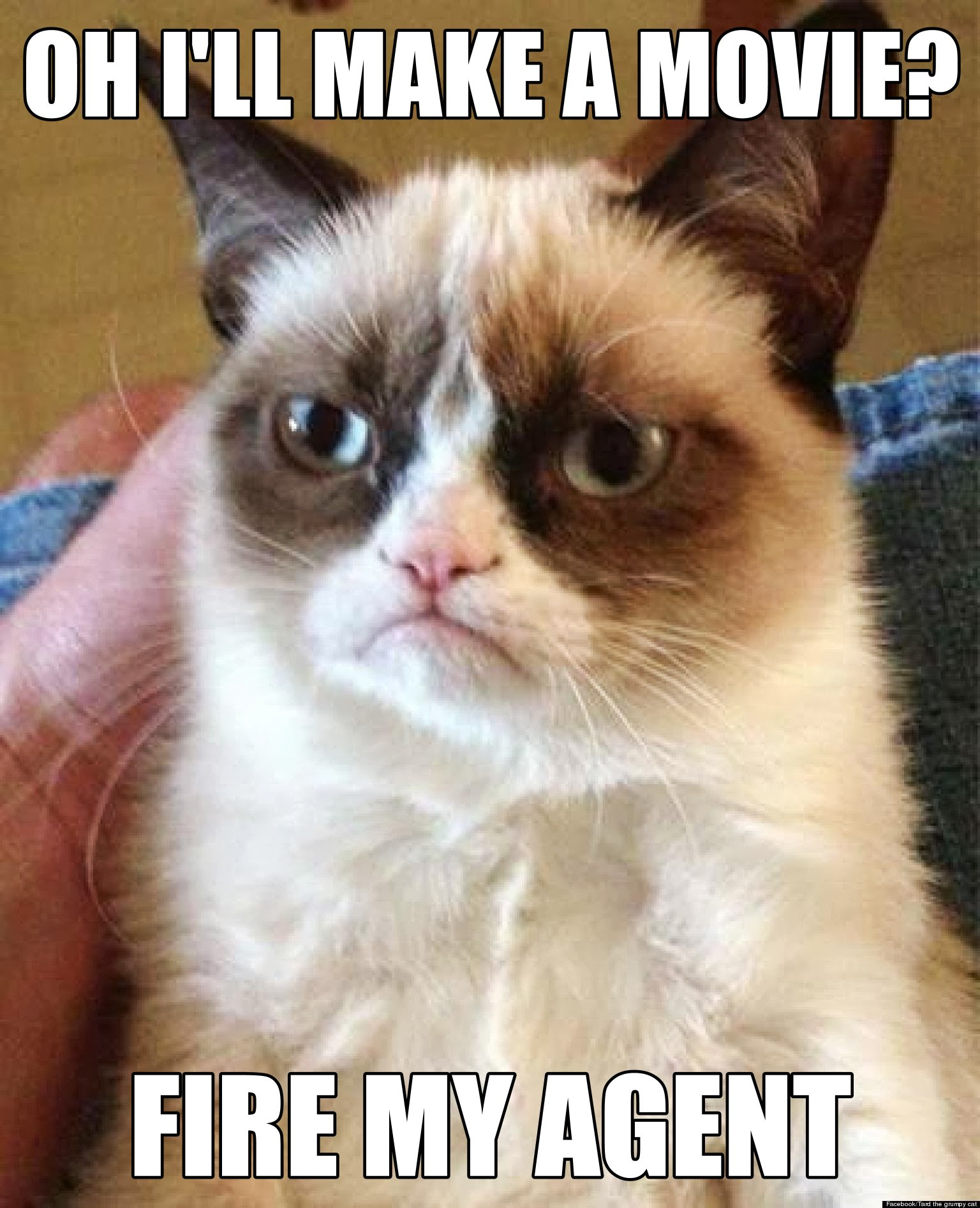 Grumpy cat learns about his movie grumpy cat know your meme ohill make a movie fire my agent facebook tard the grumpy cat thecheapjerseys Choice Image