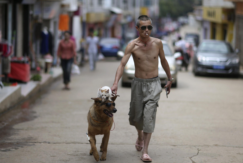 Города люди лица животные фото