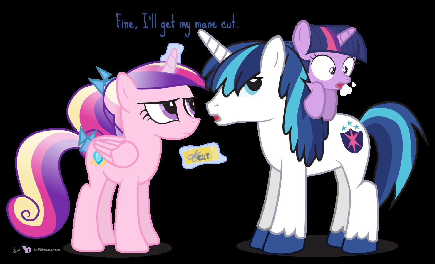 get a trim shining armor my little pony friendship is magic