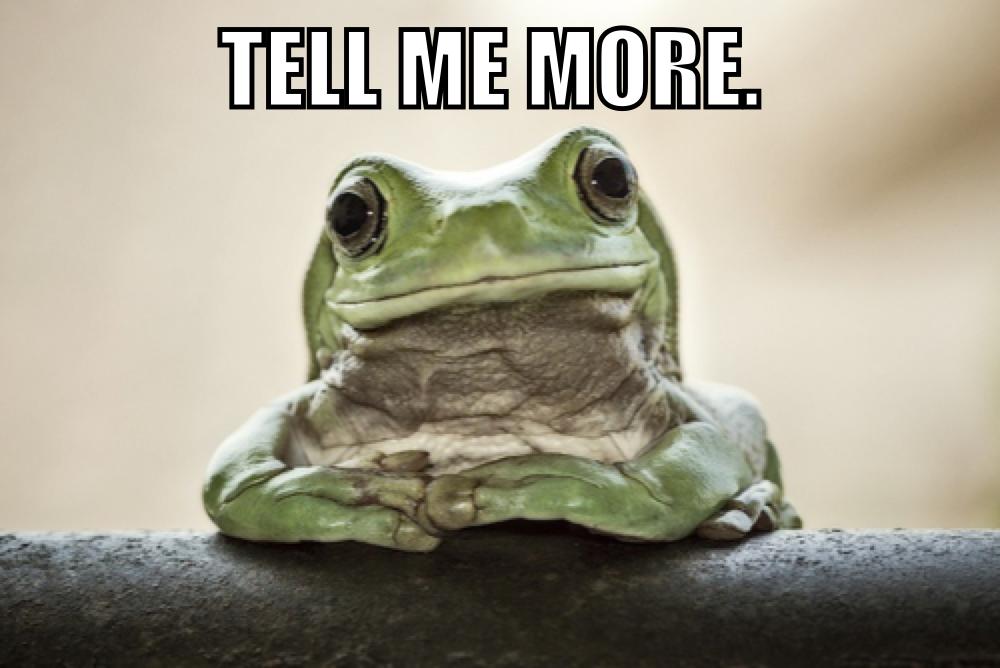 """Résultat de recherche d'images pour """"tell me more meme"""""""