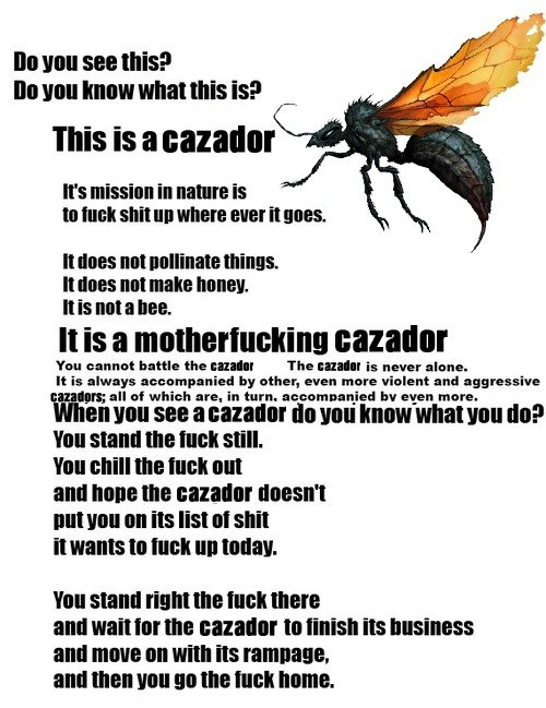 Fallout new vegas cazador fallout know your meme do you see this do you know what this is this is a cazador voltagebd Image collections