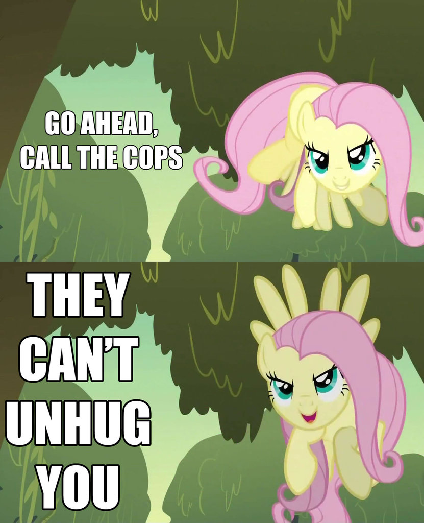 I Feel Used My Little Pony Friendship Is Magic Know Your Meme