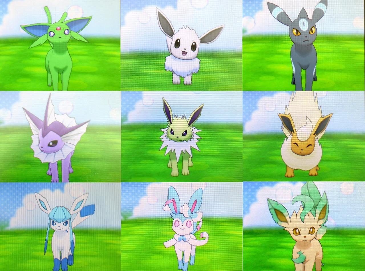 Pokemon Sun And Moon X Y Ecosystem Mammal Grass Fauna Meadow Cartoon