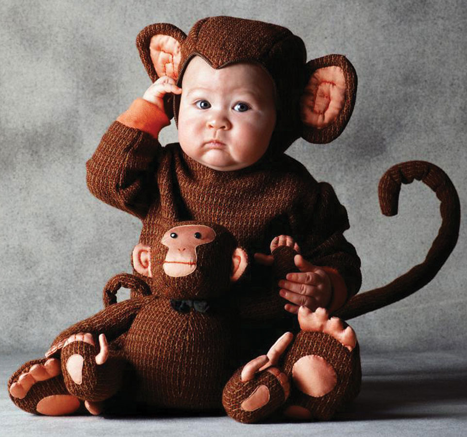 Costume  sc 1 st  Know Your Meme & Baby Monkey Costume | Halloween | Know Your Meme