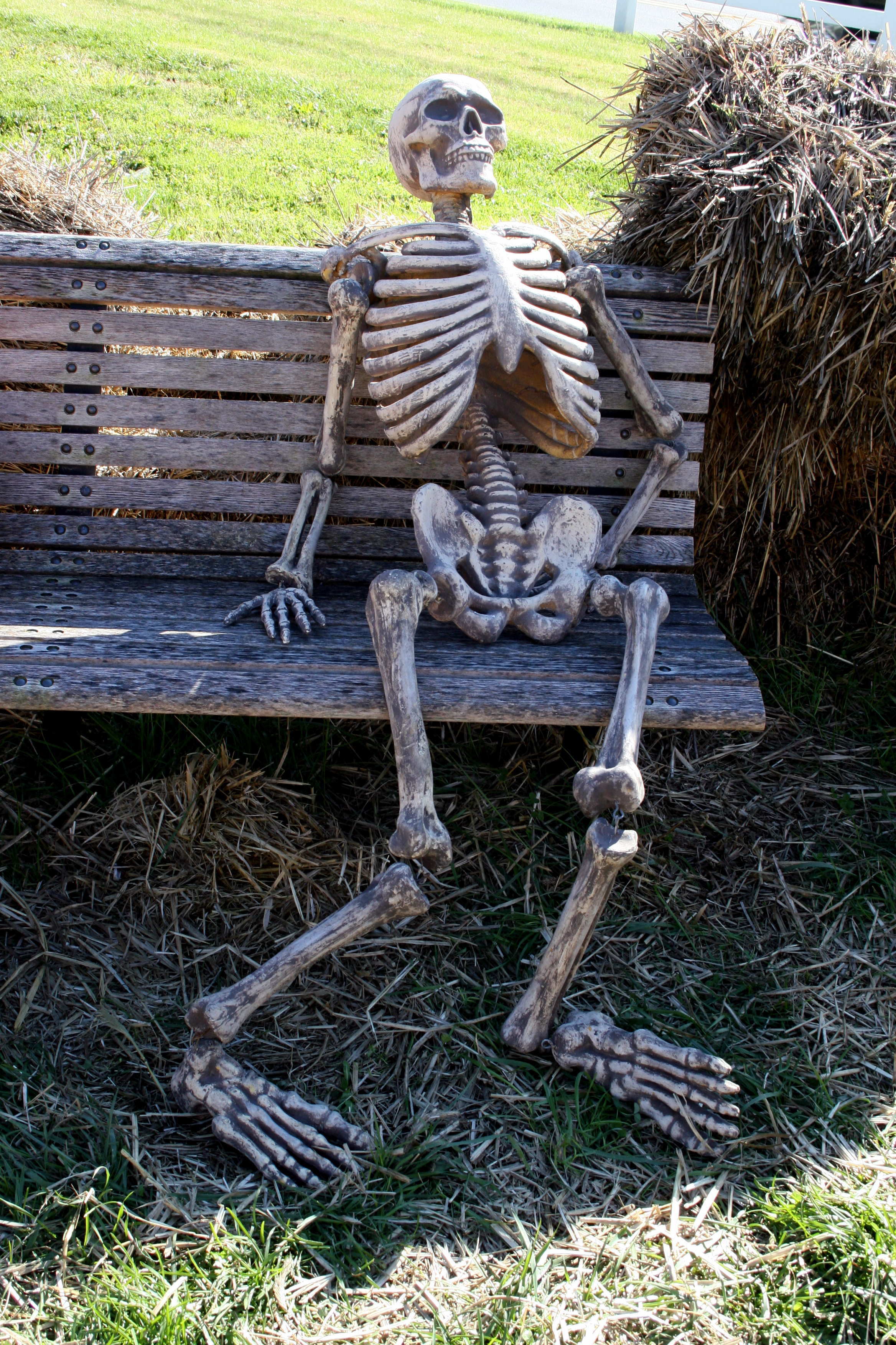 Waited too long | Skeletons | Know Your Meme