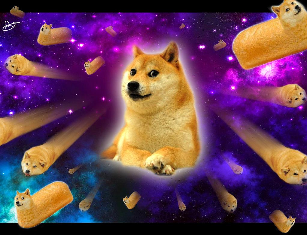 Doge Rocket