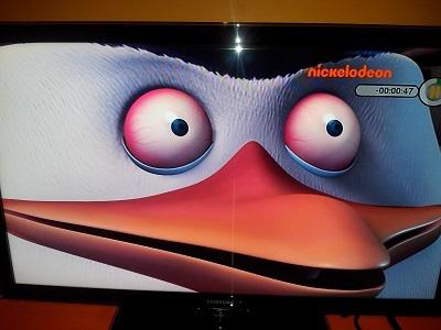 Crelodeon 000047 Penguin Nose Eye