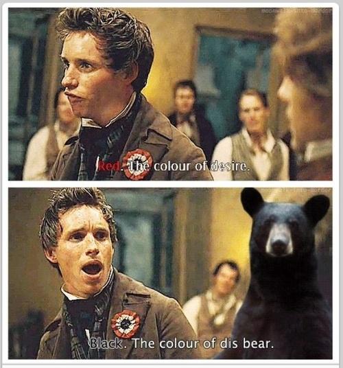 The Color Of Dis Bear Les Miserables Know Your Meme