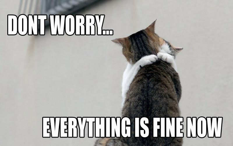 Dont Worry Everything Is Fine Now Lolcats Know Your Meme