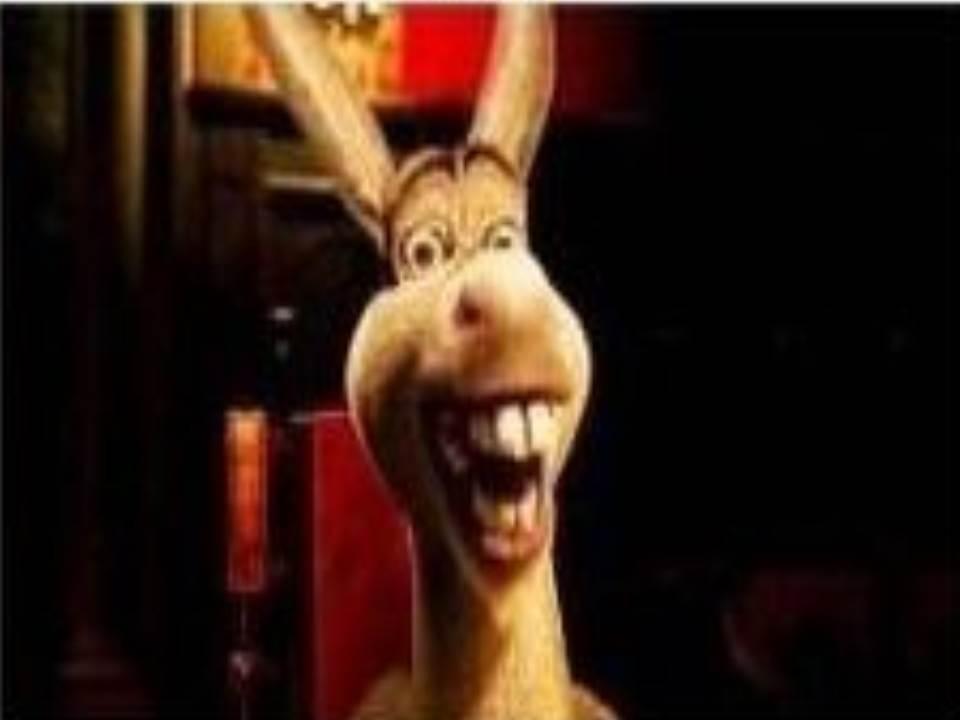 Image result for shrek donkey meme
