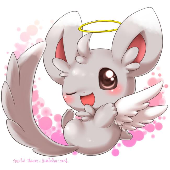 angel minccino pokémon know your meme