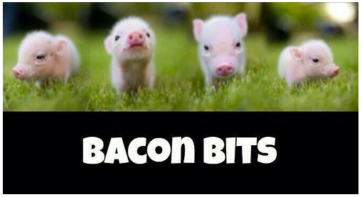 Image result for bacon bits