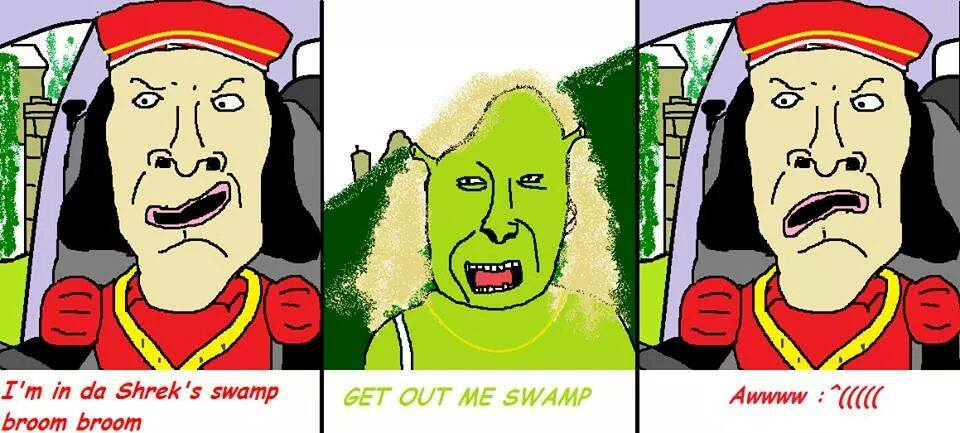 I M In Da Shrek S Swampg Broom Awwwwc Get Out Me Swamp