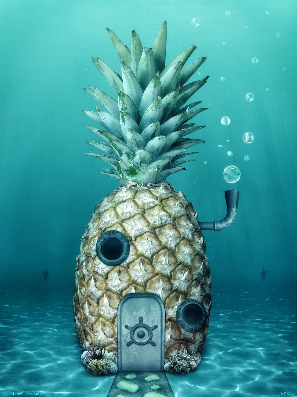 Spongebob squarepants spongebobs house by ileeh95