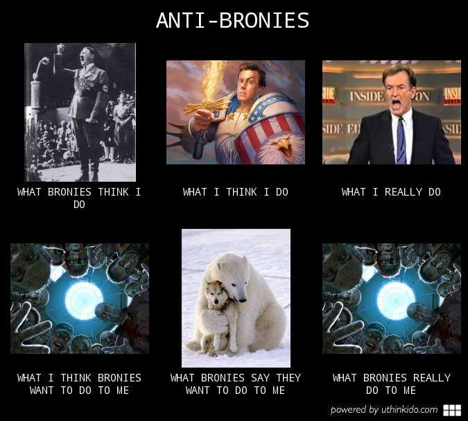 Anti-bronies  | What People Think I Do / What I Really Do