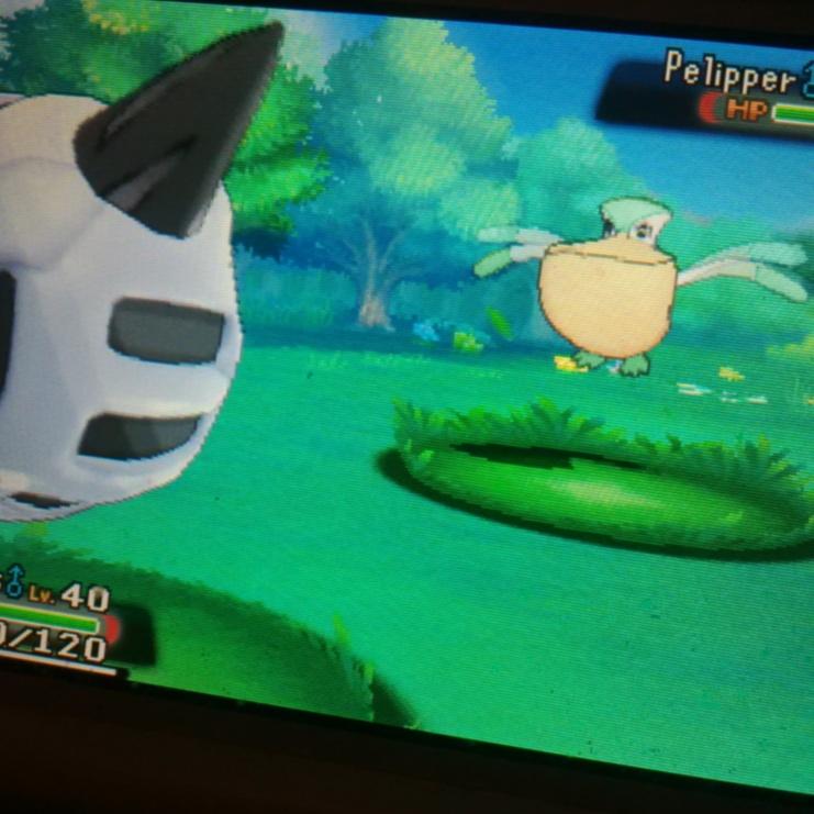 Shiny in a Demo | Pokémon | Know Your Meme