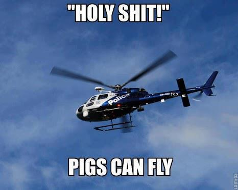 Pigs Can Fly Fuck The Police Know Your Meme