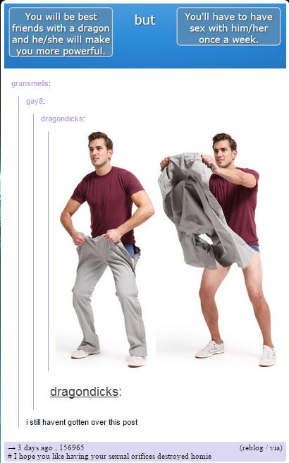 DRAGON GAY TUMBLR