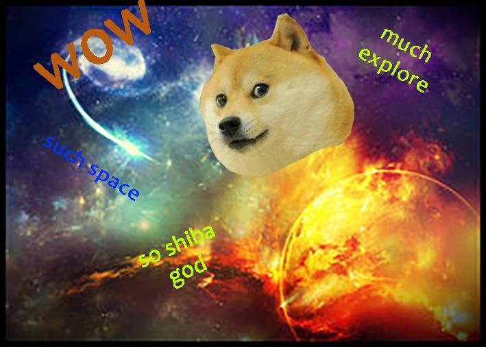 explorator doge)